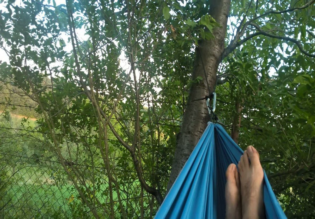 You are currently viewing Hammock